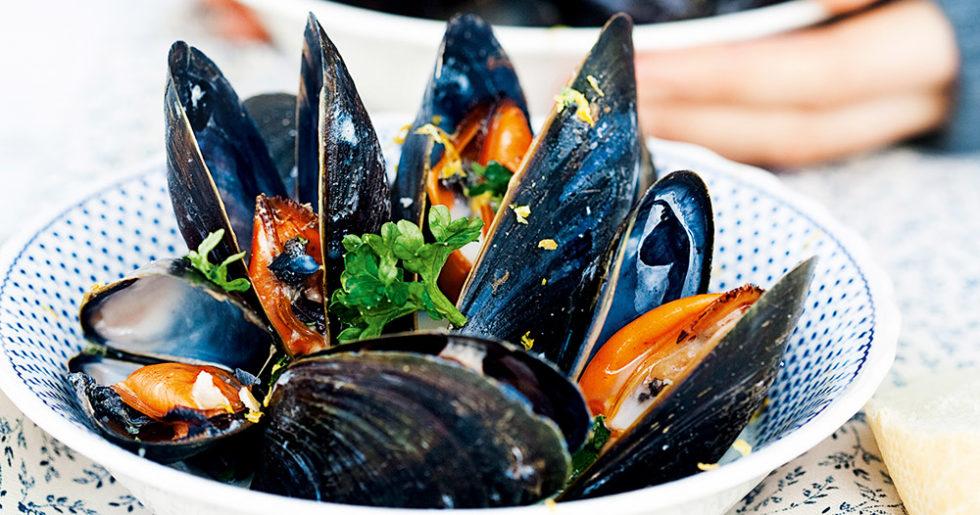 vilka musslor kan man äta