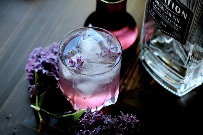 Gin & Tonic med syren.