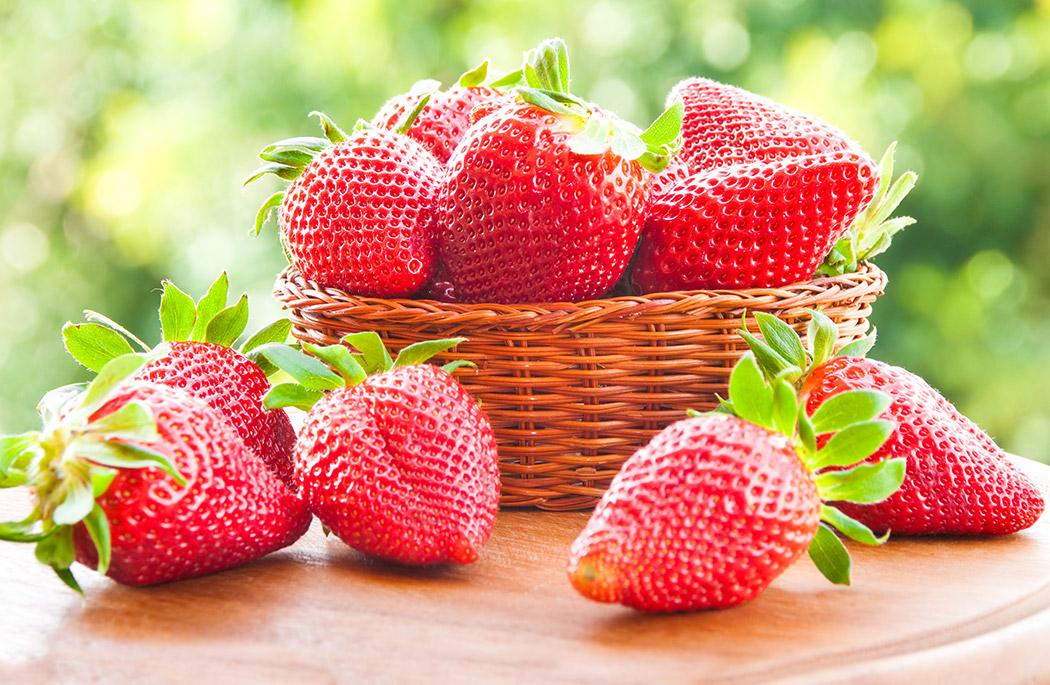 vad är en jordgubbe